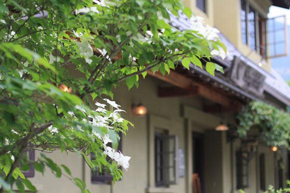 岐阜県下呂市萩原町にあるジークフリーダの店舗案内です。